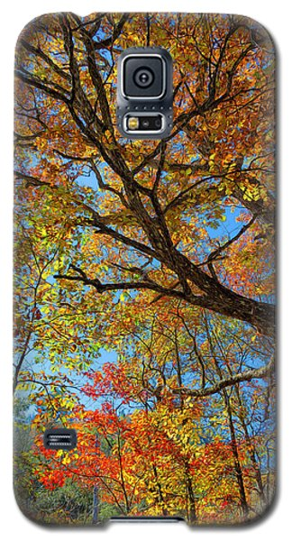 Colors On High Galaxy S5 Case
