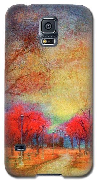 Colour Burst Galaxy S5 Case