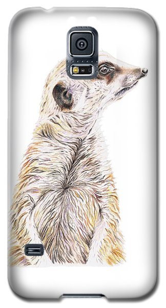 Galaxy S5 Case featuring the drawing Colour Meerkat by Elizabeth Lock