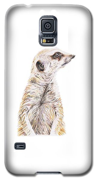 Colour Meerkat Galaxy S5 Case