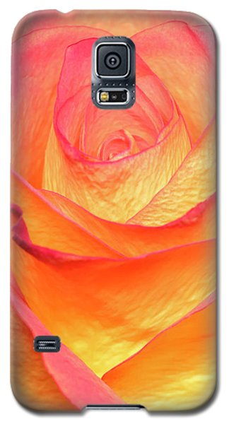 Galaxy S5 Case featuring the photograph Colourful Rosie by Roy McPeak
