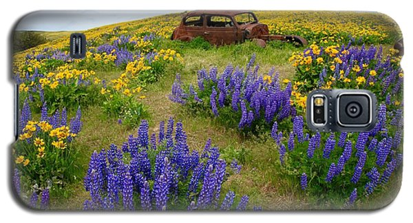 Columbia Hills Wildflowers Galaxy S5 Case by Lynn Hopwood