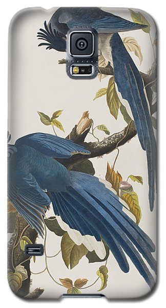 Bluejay Galaxy S5 Case - Columbia Jay by John James Audubon