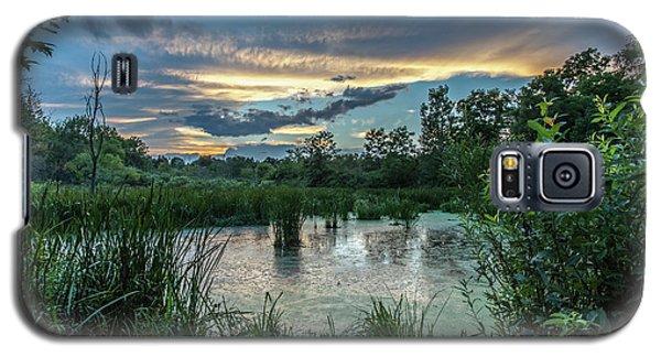 Columbia Marsh Sunset Galaxy S5 Case