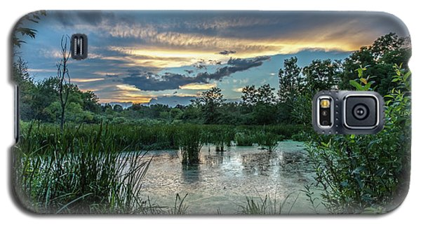 Columbia Marsh Sunset Galaxy S5 Case