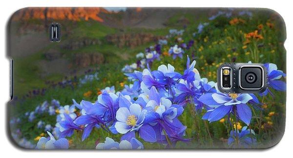 Columbine Sunrise Galaxy S5 Case