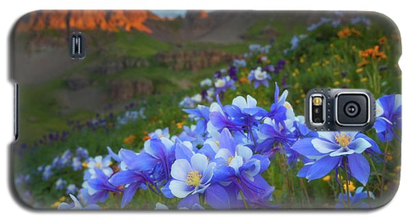 Columbine Sunrise Galaxy S5 Case