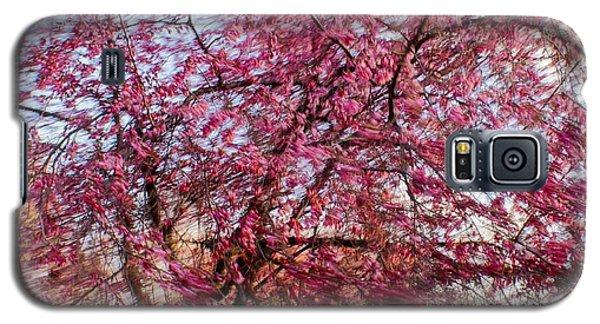 Columnar Sargent Cherry 1 Galaxy S5 Case