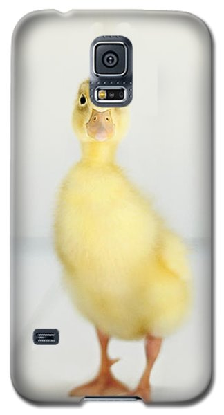 Galaxy S5 Case featuring the photograph Come Play With Me by Amy Tyler