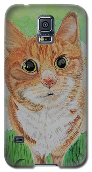Coming Up Daisies Galaxy S5 Case