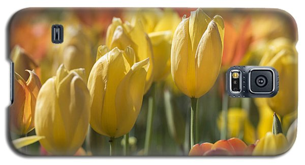 Coming Up Tulips Galaxy S5 Case