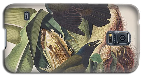 Common Crow Galaxy S5 Case by John James Audubon