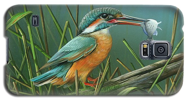 Common Kingfisher Galaxy S5 Case by Mike Brown