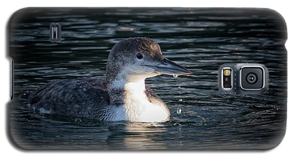 Galaxy S5 Case featuring the photograph Common Loon by Randy Hall