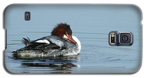 Common Merganser Galaxy S5 Case