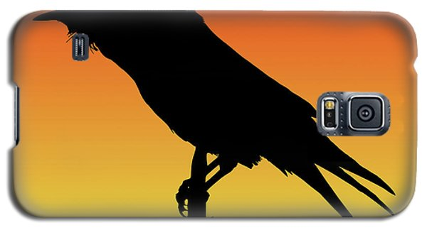 Common Raven Silhouette At Sunset Galaxy S5 Case