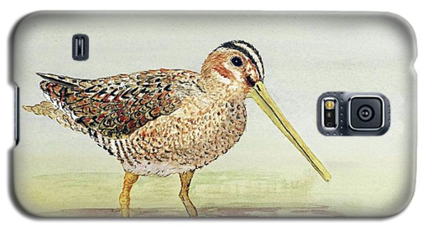 Galaxy S5 Case featuring the painting Common Snipe Wading by Thom Glace