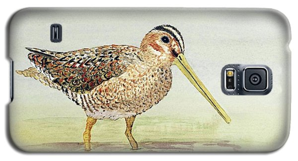 Common Snipe Wading Galaxy S5 Case by Thom Glace