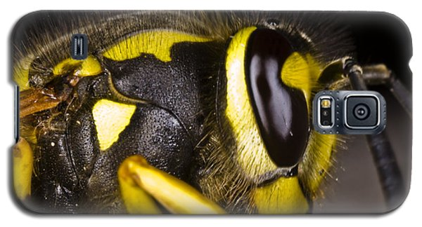 Common Wasp Vespula Vulgaris Close-up Galaxy S5 Case