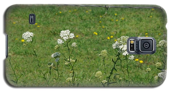 Common Yarrow Galaxy S5 Case by Robyn Stacey