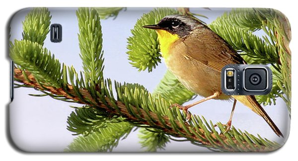 Common Yellow-throat Galaxy S5 Case by Debbie Stahre