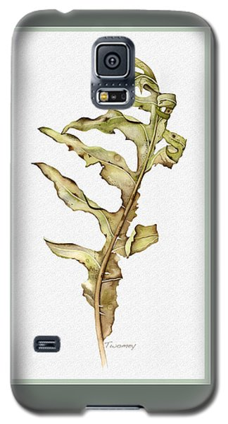 Compass Plant, Fall Galaxy S5 Case by Catherine Twomey
