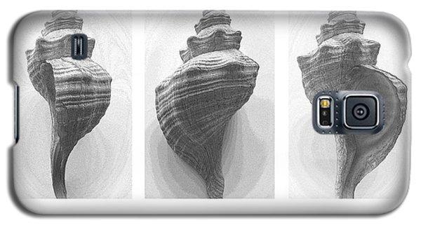 Conch Erotica Galaxy S5 Case