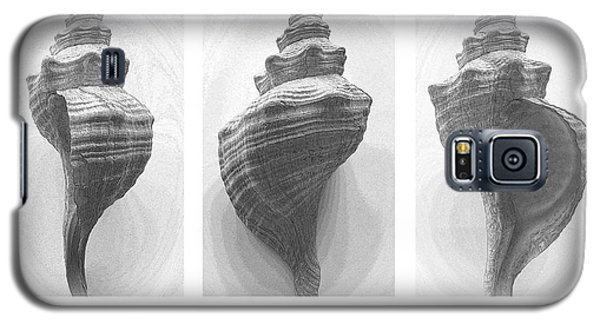 Galaxy S5 Case featuring the photograph Conch Erotica by John Bartosik