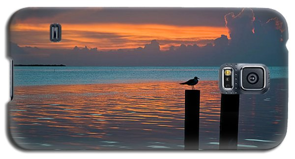Conch Key Sunset Bird On Piling Galaxy S5 Case