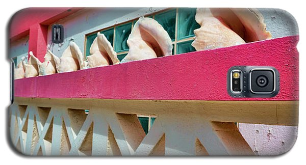 Conch Shells On A Pink Wall - Ambergris Caye, Belize Galaxy S5 Case