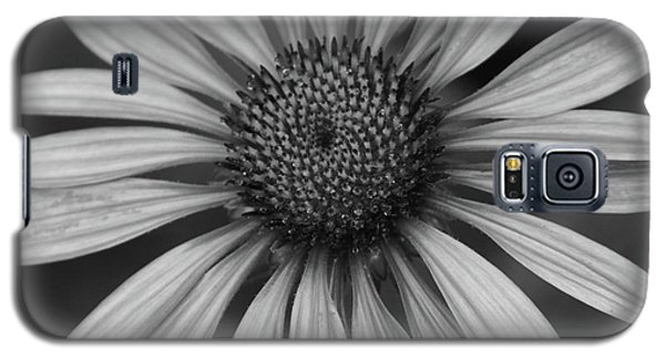 Coneflower In Black And White Galaxy S5 Case