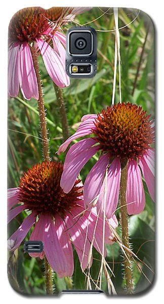 Coneflower Galaxy S5 Case