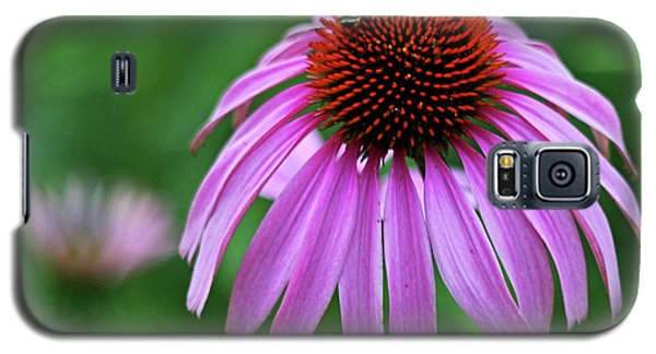Galaxy S5 Case featuring the photograph Coneflower by Judy Vincent