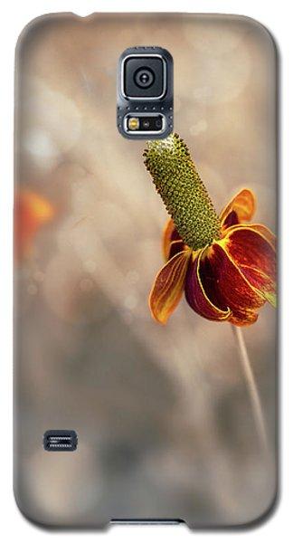 Mexican Hat Prairie Flower Galaxy S5 Case