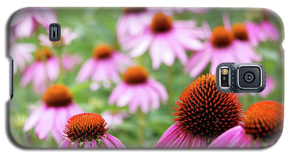 Galaxy S5 Case featuring the photograph Coneflowers by David Chandler