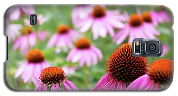 Coneflowers Galaxy S5 Case