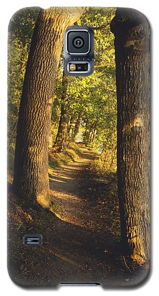 Conference Point Path - Lake Geneva Wisconsin Galaxy S5 Case
