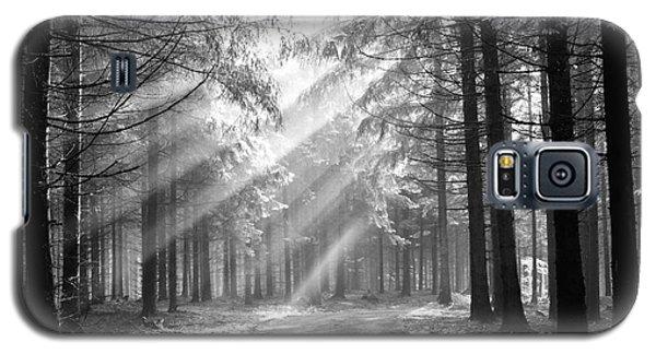 Conifer Forest In Fog Galaxy S5 Case