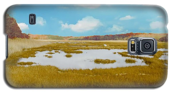 Connecticut Salt Water Marsh Galaxy S5 Case