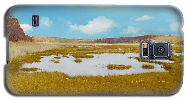 Connecticut Salt Water Marsh Galaxy S5 Case