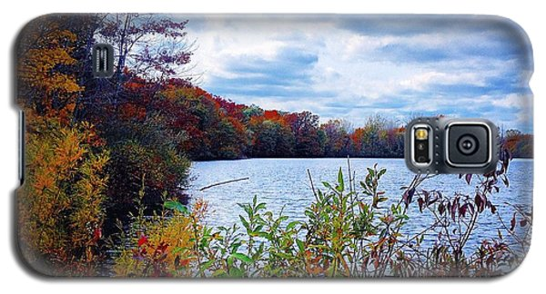 Conservation Park And Pine River In The Fall Galaxy S5 Case