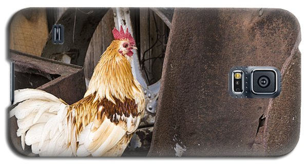 Galaxy S5 Case featuring the photograph Contemplating Rust by Laura Pratt