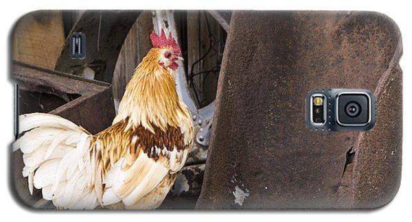 Contemplating Rust Galaxy S5 Case