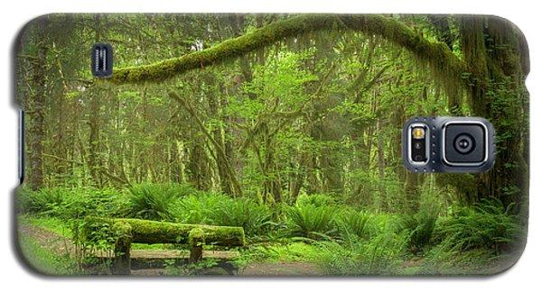Contemplative Rain Forest Galaxy S5 Case