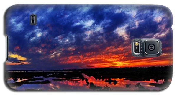 Contrast Galaxy S5 Case