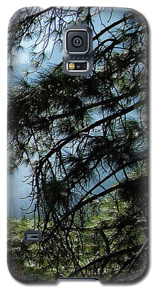 4 Of 4 Controlled Burn Of Yosemite Section Galaxy S5 Case
