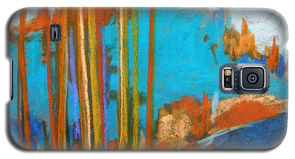 Cool Blues Galaxy S5 Case by John Williams