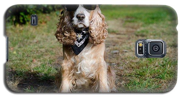 Cool Dog Galaxy S5 Case