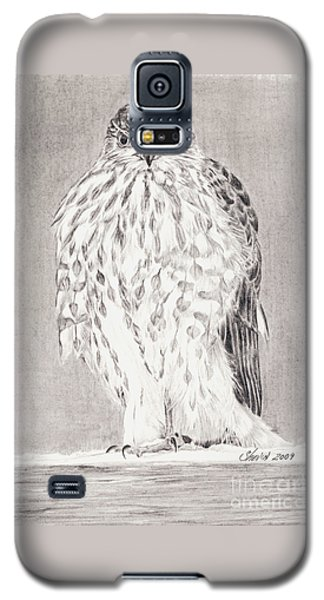 Coopers Hawk Galaxy S5 Case