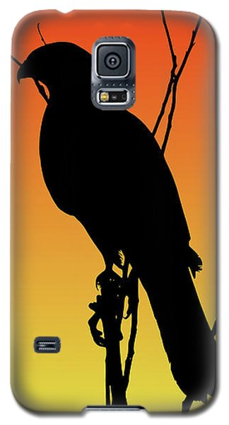 Coopers Hawk Silhouette At Sunset Galaxy S5 Case